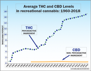 Chart showing an 18% increase in average THC and CBD levels in recreational cannabis 1960-2018.